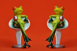 frogs-1397997_640