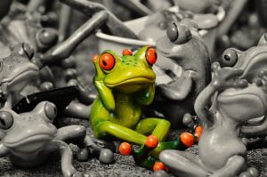 frogs-1413727_640