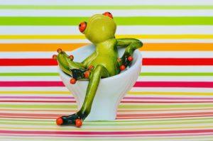 frog-1268891_640