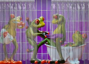 frogs-1517954_640